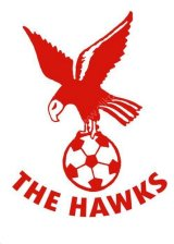 Whitehawk to become Brighton City FC